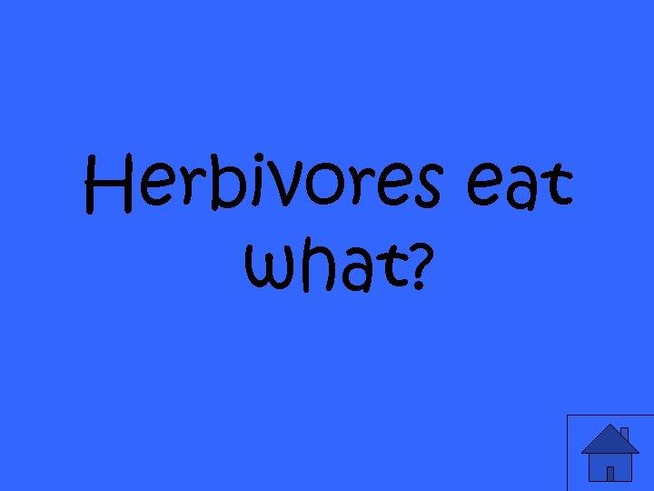 Herbivores eat what?