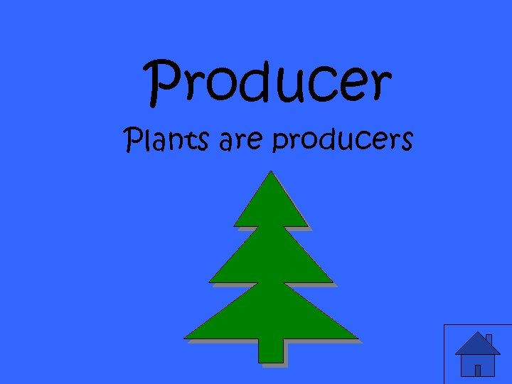 Producer Plants are producers
