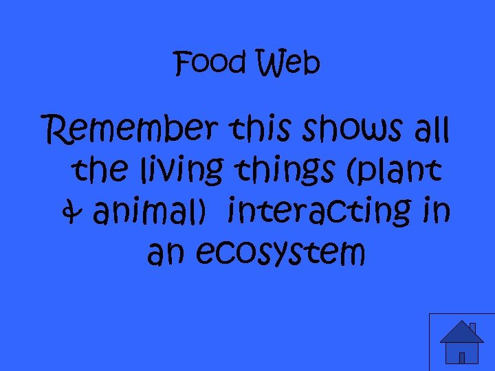 Food Web Remember this shows all the living things (plant & animal) interacting in