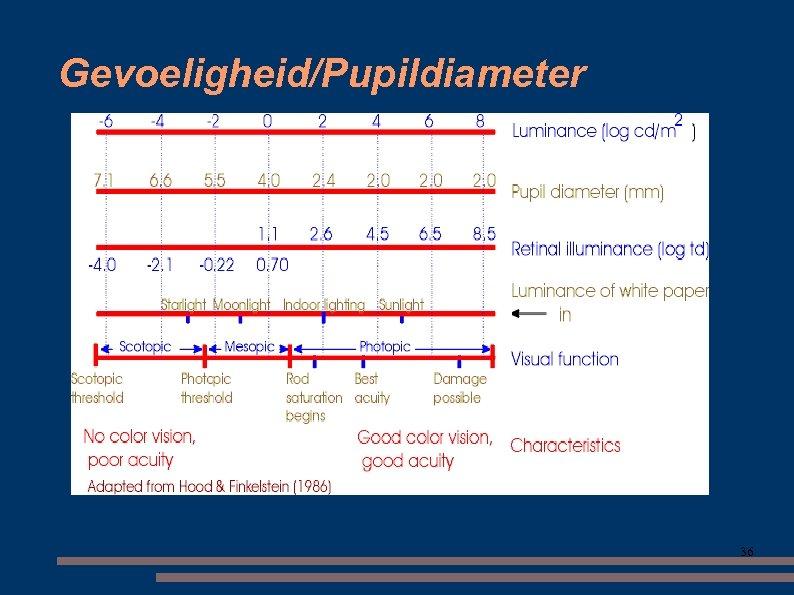 Gevoeligheid/Pupildiameter 36