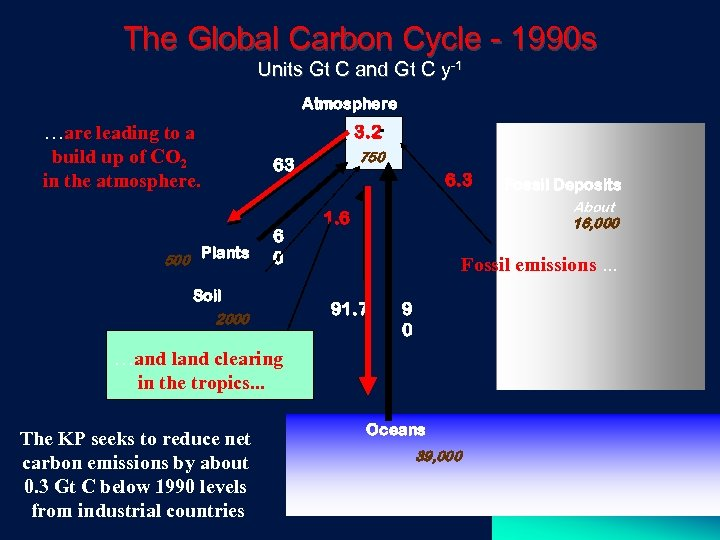 The Global Carbon Cycle - 1990 s Units Gt C and Gt C y-1