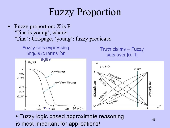 Fuzzy Proportion • Fuzzy proportion: X is P 'Tina is young', where: 'Tina': Crispage,