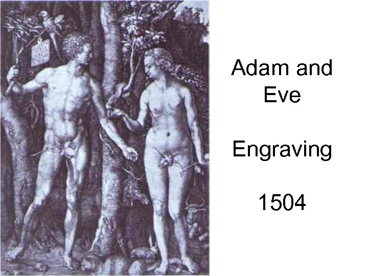 Adam and Eve Engraving 1504