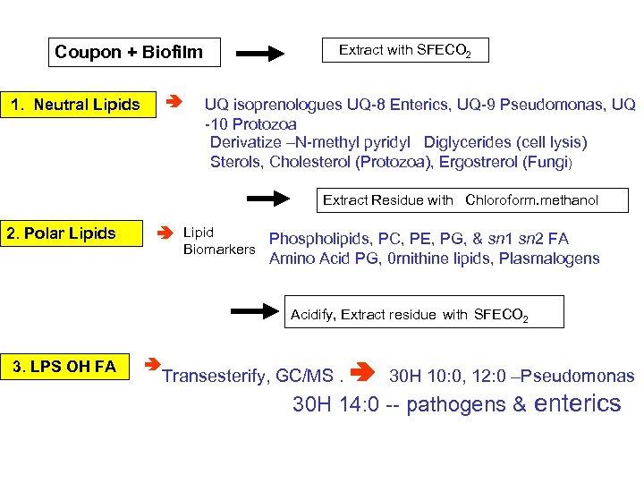 Extract with SFECO 2 Coupon + Biofilm 1. Neutral Lipids UQ isoprenologues UQ-8 Enterics,