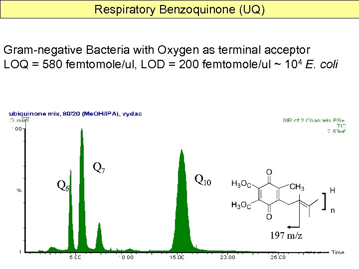 Respiratory Benzoquinone (UQ) Gram-negative Bacteria with Oxygen as terminal acceptor LOQ = 580 femtomole/ul,