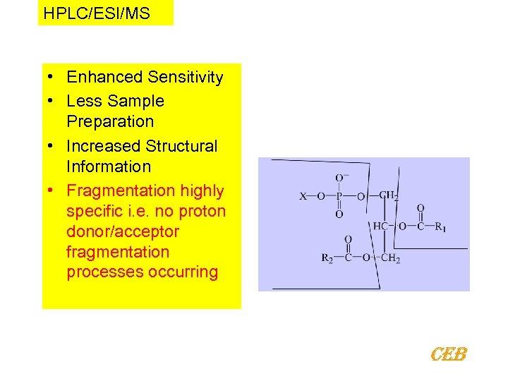 HPLC/ESI/MS • Enhanced Sensitivity • Less Sample Preparation • Increased Structural Information • Fragmentation