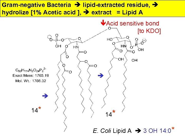 Gram-negative Bacteria lipid-extracted residue, hydrolize [1% Acetic acid ], extract = Lipid A êAcid