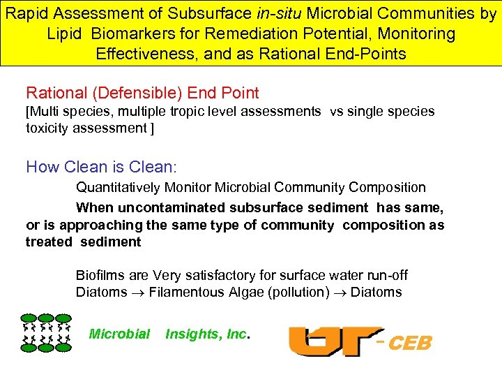 Rapid Assessment of Subsurface in-situ Microbial Communities by Lipid Biomarkers for Remediation Potential, Monitoring