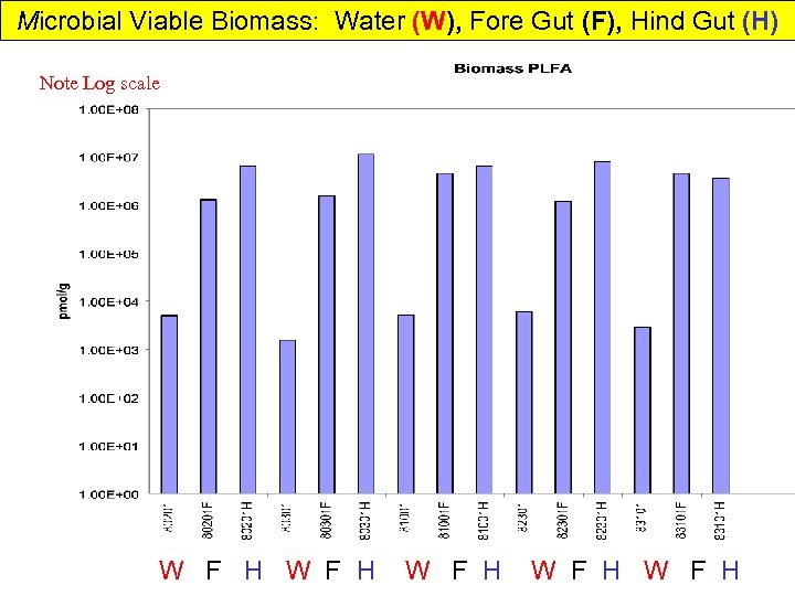 Microbial Viable Biomass: Water (W), Fore Gut (F), Hind Gut (H) Note Log scale