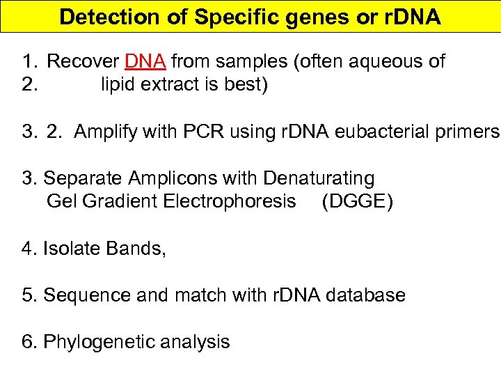 Detection of Specific genes or r. DNA 1. Recover DNA from samples (often aqueous