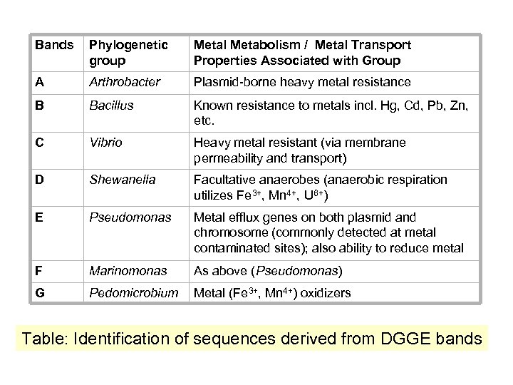 Bands Phylogenetic group Metal Metabolism / Metal Transport Properties Associated with Group A Arthrobacter