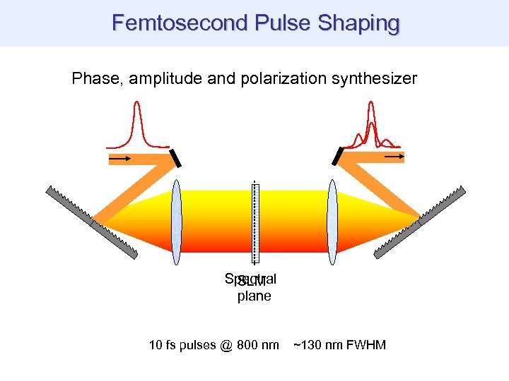 THG images of biological specimen Femtosecond Pulse Shaping Phase, amplitude and polarization synthesizer Spectral
