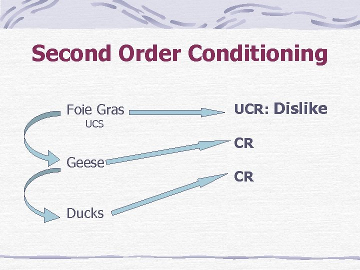 Second Order Conditioning Foie Gras UCR: Dislike UCS CR Geese Ducks CR
