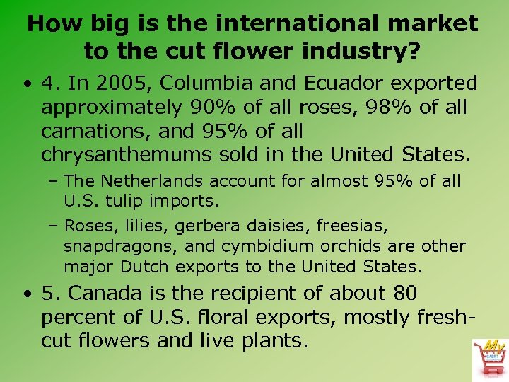 How big is the international market to the cut flower industry? • 4. In