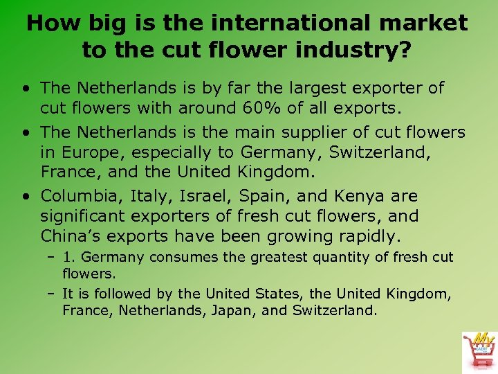 How big is the international market to the cut flower industry? • The Netherlands