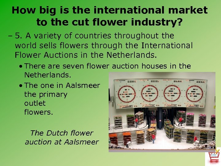 How big is the international market to the cut flower industry? – 5. A