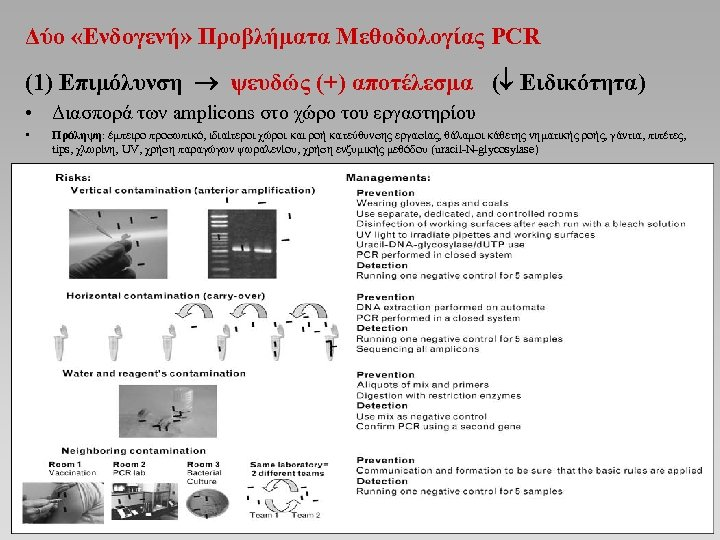 Δύο «Ενδογενή» Προβλήματα Μεθοδολογίας PCR (1) Επιμόλυνση ψευδώς (+) αποτέλεσμα ( Ειδικότητα) • Διασπορά