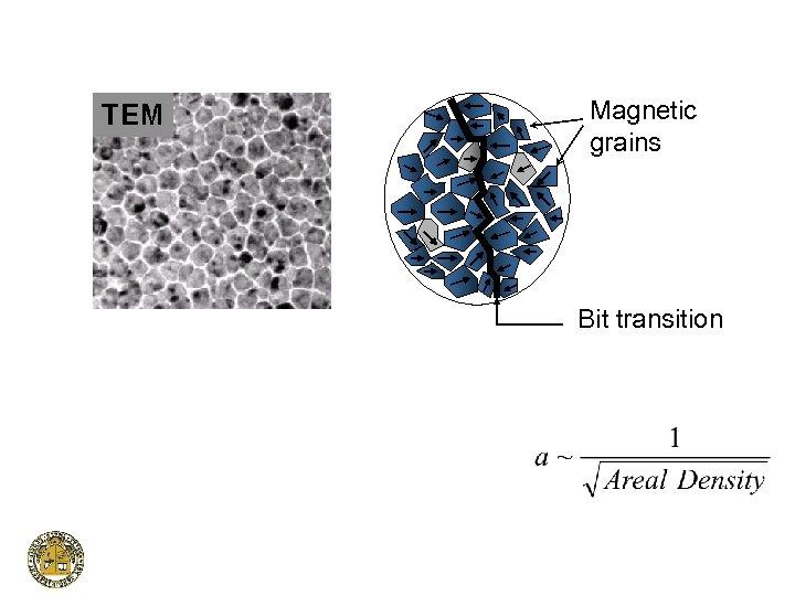 Magnetic grains Bit transition
