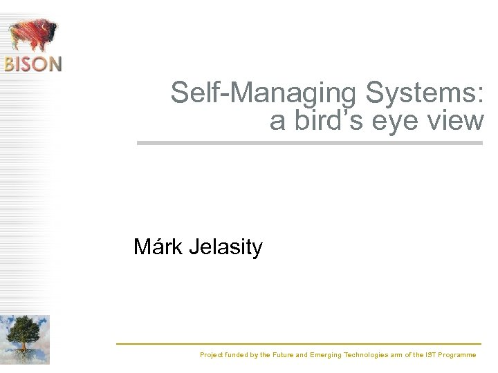 Self-Managing Systems: a bird's eye view Márk Jelasity Project funded by the Future and