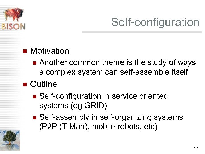 Self-configuration n Motivation n n Another common theme is the study of ways a