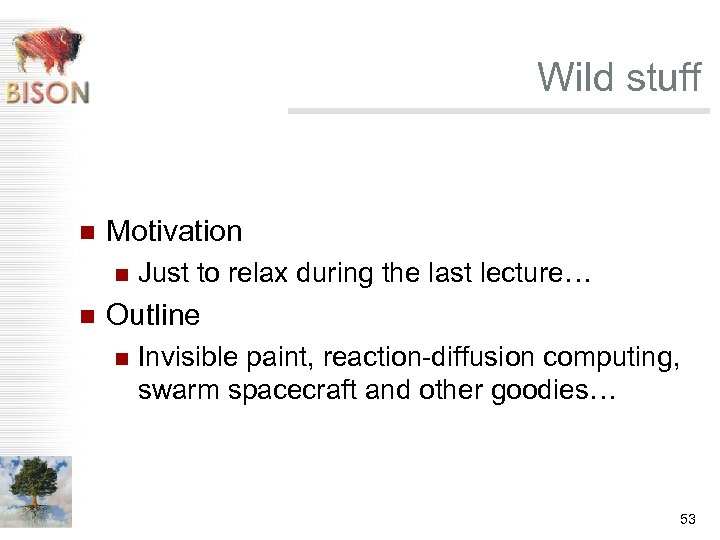 Wild stuff n Motivation n n Just to relax during the last lecture… Outline