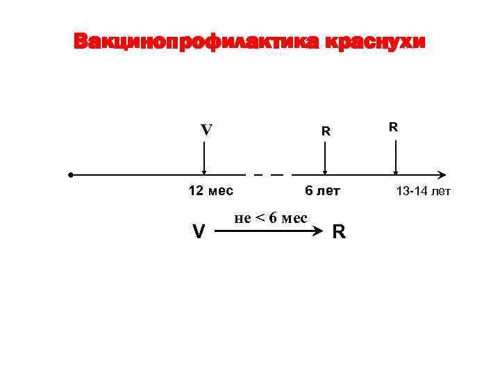 Вакцинопрофилактика краснухи V 12 мес V R R 6 лет не < 6 мес