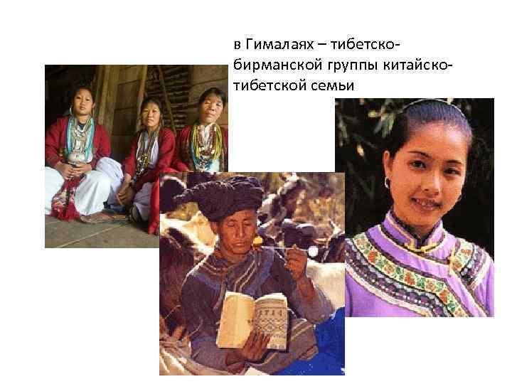 в Гималаях – тибетскобирманской группы китайскотибетской семьи