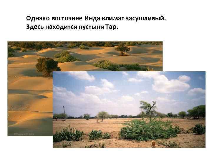 Однако восточнее Инда климат засушливый. Здесь находится пустыня Тар.
