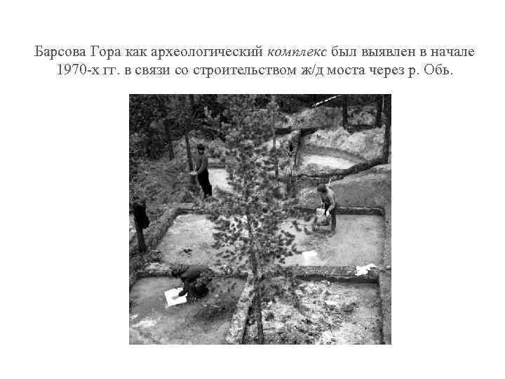 Барсова Гора как археологический комплекс был выявлен в начале 1970 -х гг. в связи