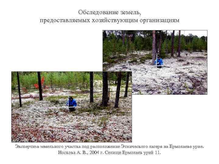 Обследование земель, предоставляемых хозяйствующим организациям Экспертиза земельного участка под расположение Этнического лагеря на Ермолаеве