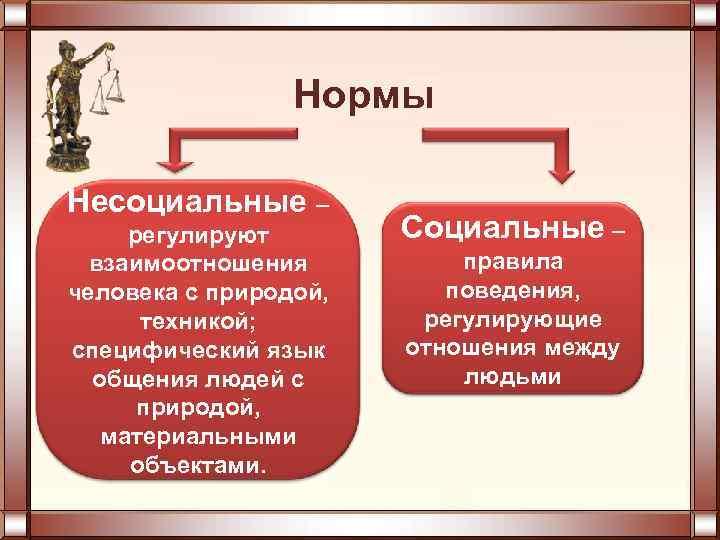Нормы Несоциальные – регулируют взаимоотношения человека с природой, техникой; специфический язык общения людей с