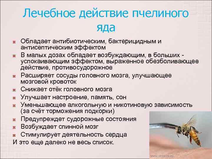 Лечебное действие пчелиного яда Обладает антибиотическим, бактерицидным и антисептическим эффектом В малых дозах обладает