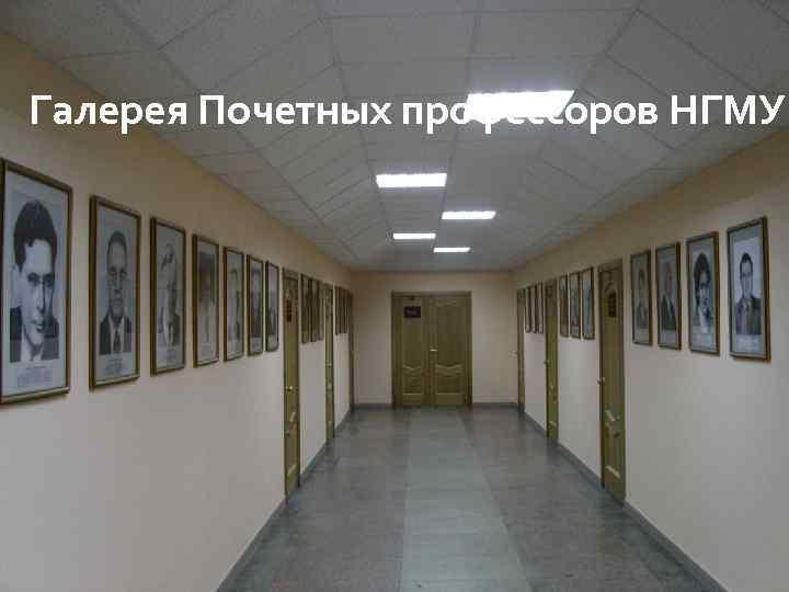Галерея Почетных профессоров НГМУ