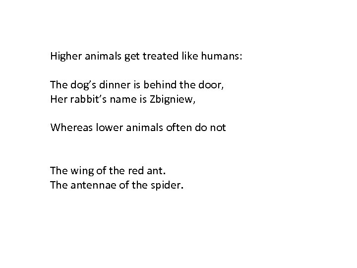 Higher animals get treated like humans: The dog's dinner is behind the door, Her