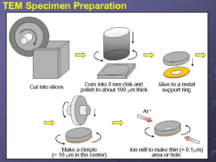 TEM Specimen Preparation Cut into slices Core into 3 mm disk and polish to