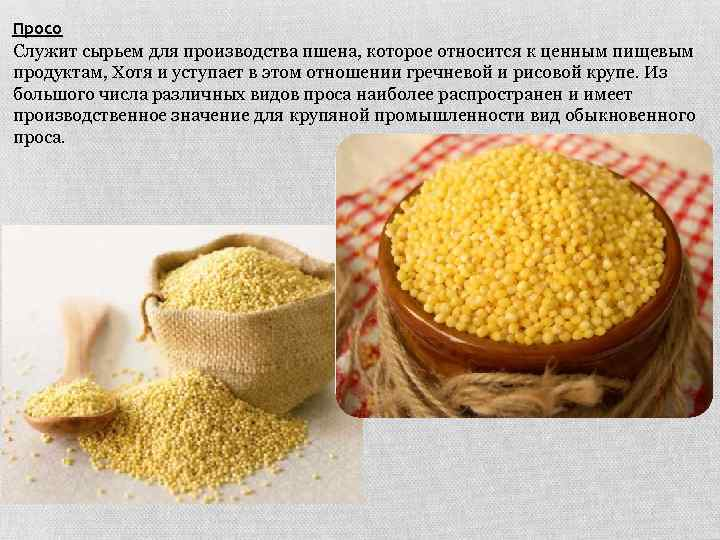 Просо Служит сырьем для производства пшена, которое относится к ценным пищевым продуктам, Хотя и