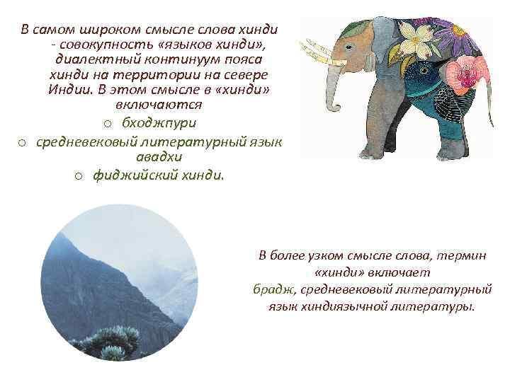 В самом широком смысле слова хинди - совокупность «языков хинди» , диалектный континуум пояса