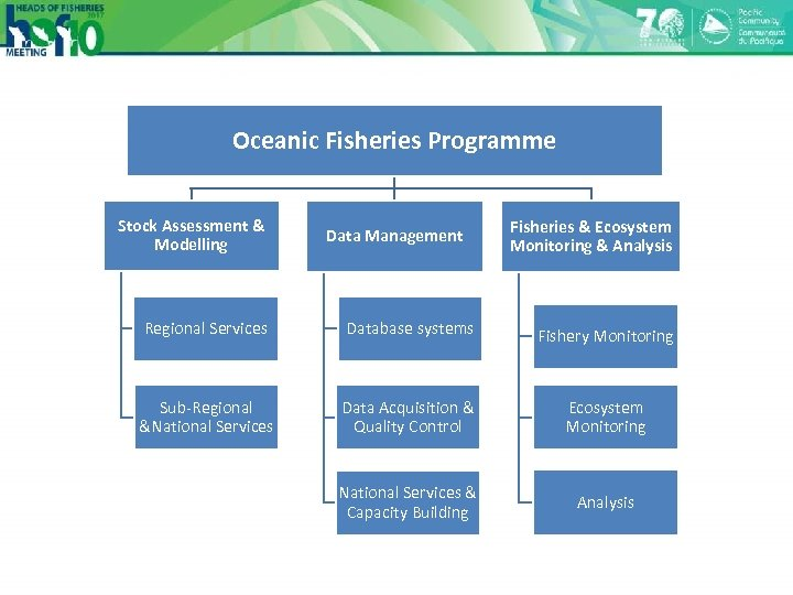 Oceanic Fisheries Programme Stock Assessment & Modelling Data Management Fisheries & Ecosystem Monitoring &