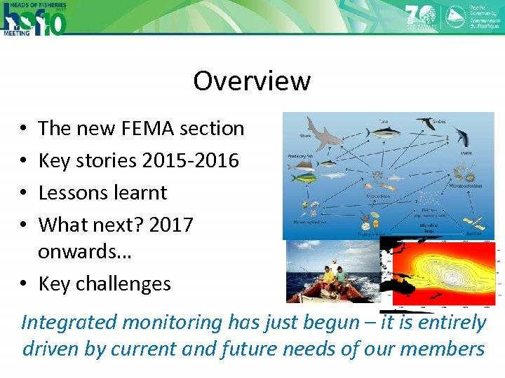 Overview The new FEMA section Key stories 2015 -2016 Lessons learnt What next? 2017