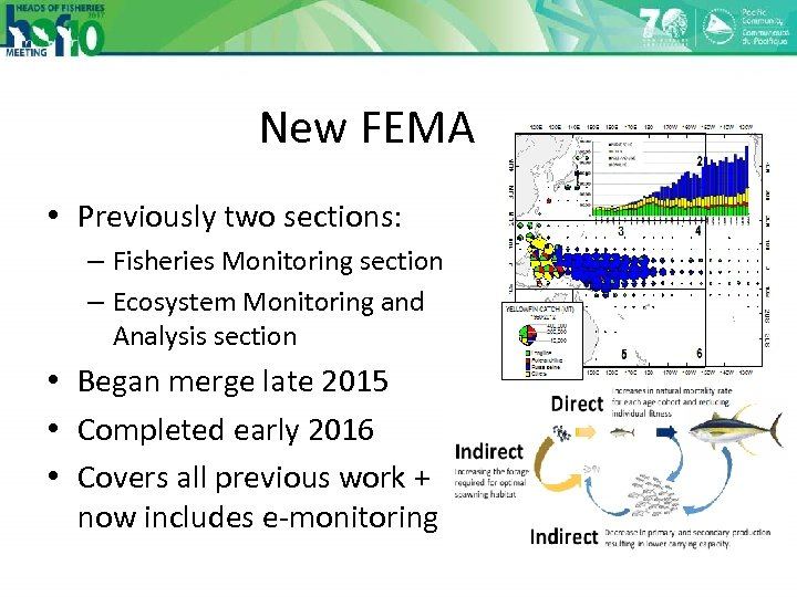 New FEMA • Previously two sections: – Fisheries Monitoring section – Ecosystem Monitoring and