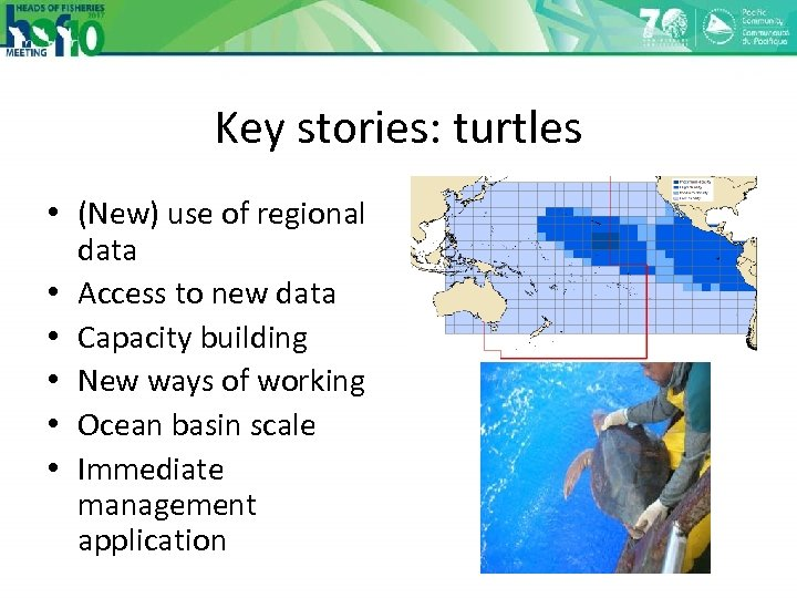 Key stories: turtles • (New) use of regional data • Access to new data