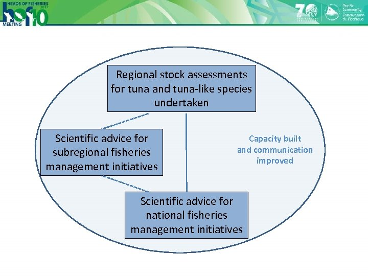 Regional stock assessments for tuna and tuna-like species undertaken Scientific advice for subregional fisheries