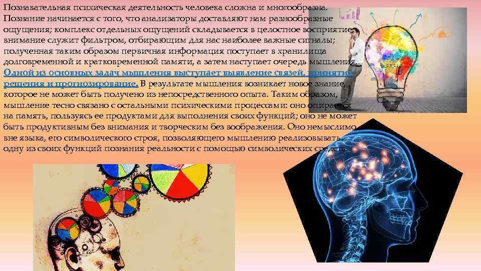 Познавательная психическая деятельность человека сложна и многообразна. Познание начинается с того, что анализаторы доставляют