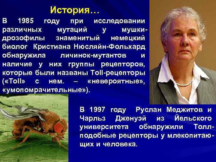 История… В 1985 году при исследовании различных мутаций у мушкидрозофилы знаменитый немецкий биолог Кристиана