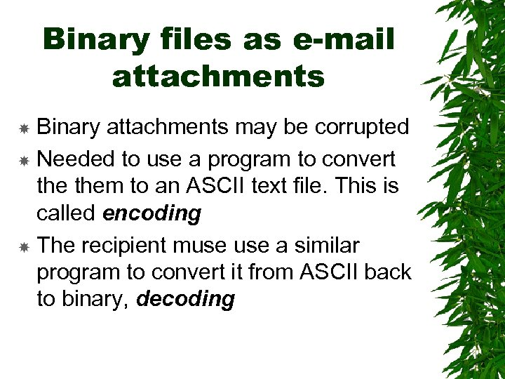 Binary files as e-mail attachments Binary attachments may be corrupted Needed to use a