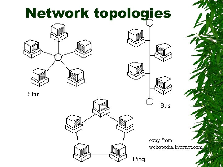 Network topologies copy from webopedia. internet. com