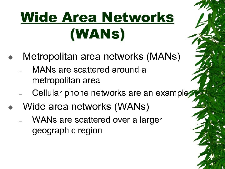 Wide Area Networks (WANs) Metropolitan area networks (MANs) – – MANs are scattered around