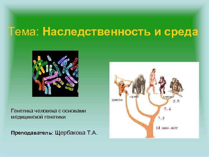 Тема: Наследственность и среда Генетика человека с основами медицинской генетики Преподаватель: Щербакова Т. А.