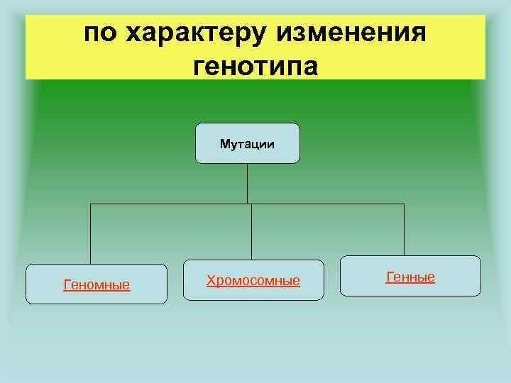 по характеру изменения генотипа Мутации Геномные Хромосомные Генные