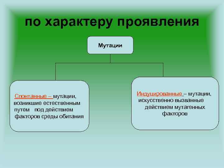 по характеру проявления Мутации Спонтанные – мутации, возникшие естественным путем под действием факторов среды